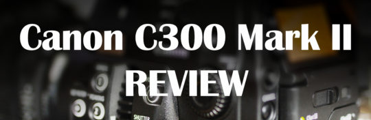 Canon C300 Mark II C-Log2 LUT download