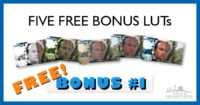 Download Five Free Bonus Styling LUTs
