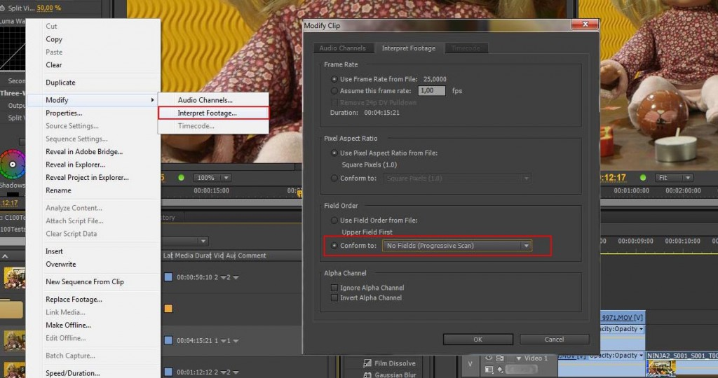 AVCHD in Premiere CS6: Conform to Progressive